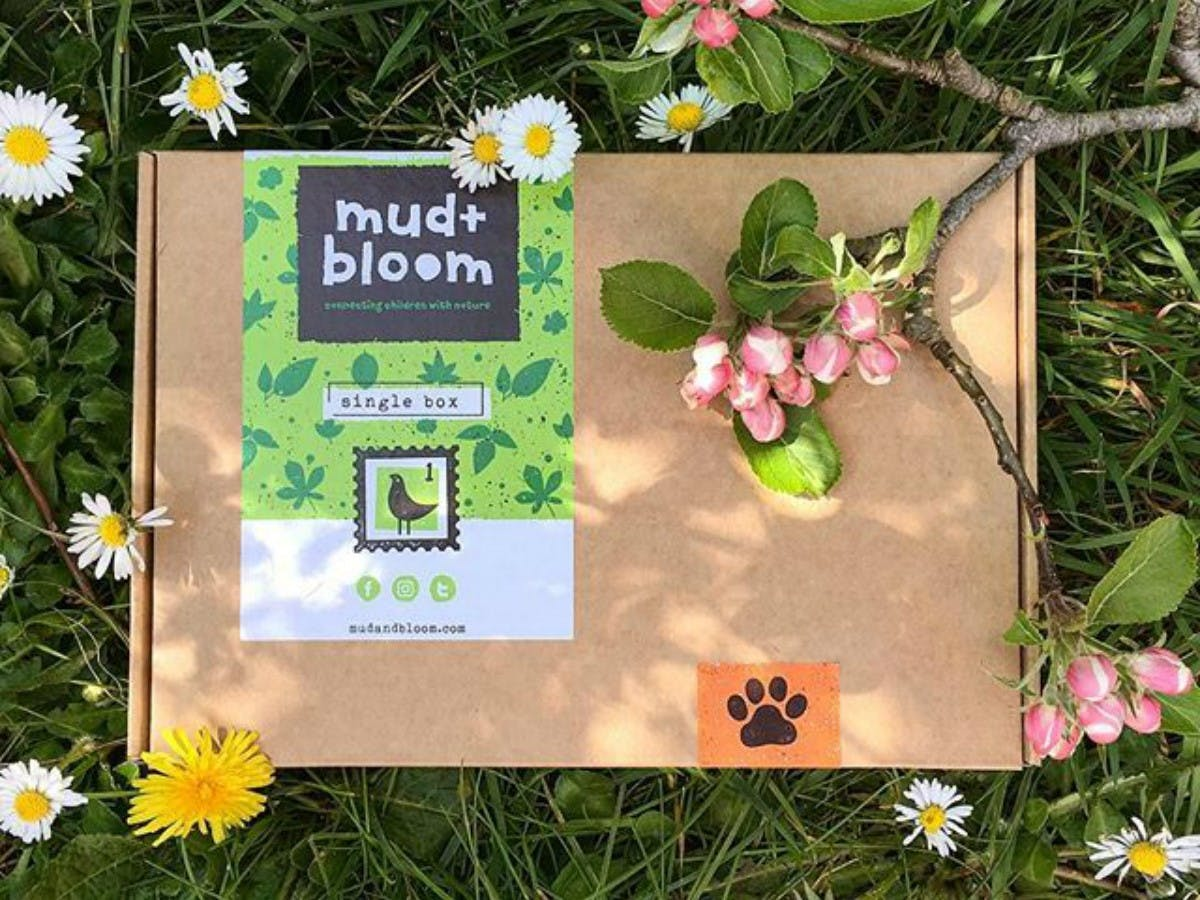 Mud & Bloom Box