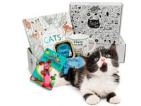 Cattitude Box – For Proud Cat Ladies